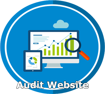 Audit Website